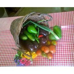 Le VEGET , assortiment de légumes
