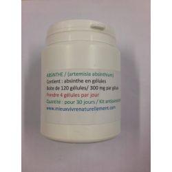 Absinthe 120 gélules
