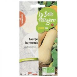 Courge Butternut 2,5g Bio