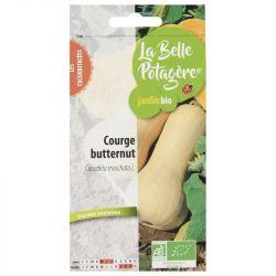 Courge Butternut 2,5g Bio