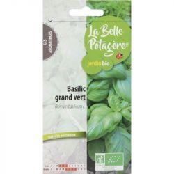 Basilic grand vert 0,5g Bio