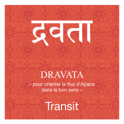 Infusion ayurvédique bio DRAVATA, transit
