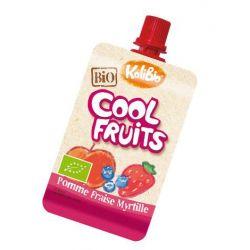 Gourdes fruits rouges pommes fraise myrtille par 4