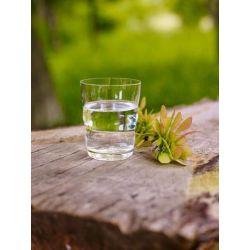 verres Jasmina Fleur de vie